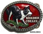 Border Collie Dog Belt Buckle + display stand. Code BM7